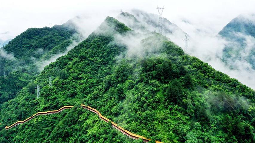 陕西印发通知 加快完成秦岭生态保护区内矿业权退出安卓版