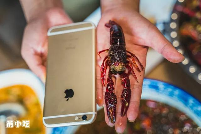 你爱小龙虾照样水煮鱼?平顶山这家神奇串店,嗑虾撸串还能K歌?插图13