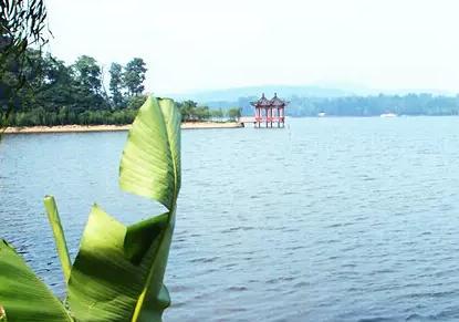 2020想去中国平顶山旅游的景点:中原大佛,漫滩水库,龙潭峡插图1