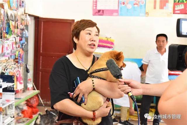 汝州市第一张犬牌发出,家有萌犬的你还在等什么插图1