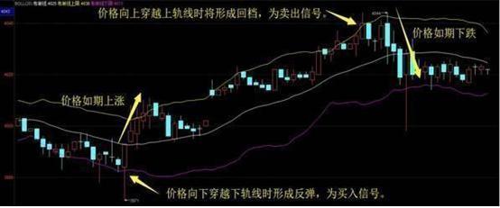 老股民的炒股经验:投资要想成功还