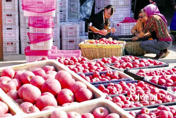 """中国·山东国际苹果节,四大展区""""解码""""苹果全产业链"""