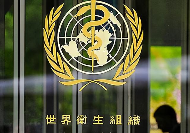 """欧洲议会通过所谓""""挺台议案"""",鼓动欧盟会员国支持台湾参与WHO"""