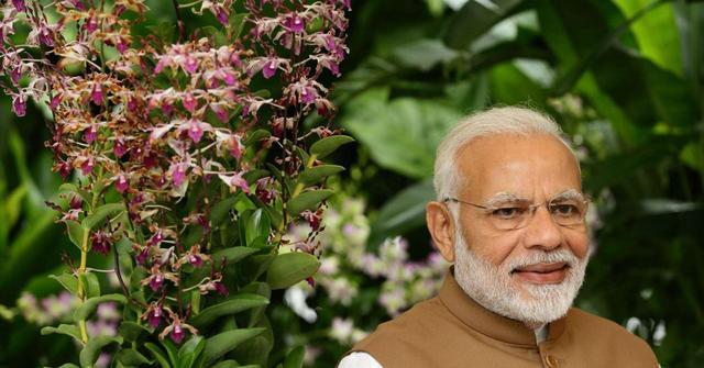 局势紧张之际,越南跟印度签署重要合作协议,还高调支持印度入常插图3