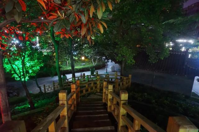 「游园夜景醉游人」晚上8点以后的工人文化宫,美爆了插图25
