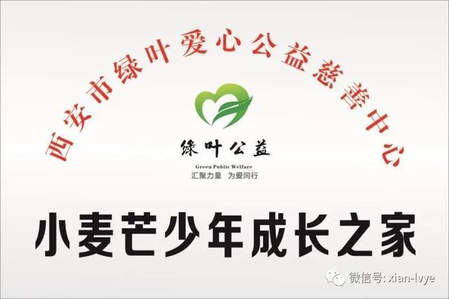 热烈庆祝绿叶小麦芒少年成长之家(临潼站)正式挂牌成立