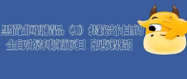 黑猫社网赚精品(20):揭秘支付宝的全自动暴利躺赚项目【视频课程】