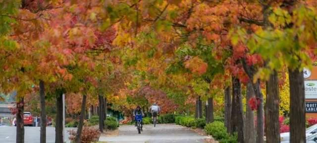 南西雅图市内观赏秋色的好地方就到些地方