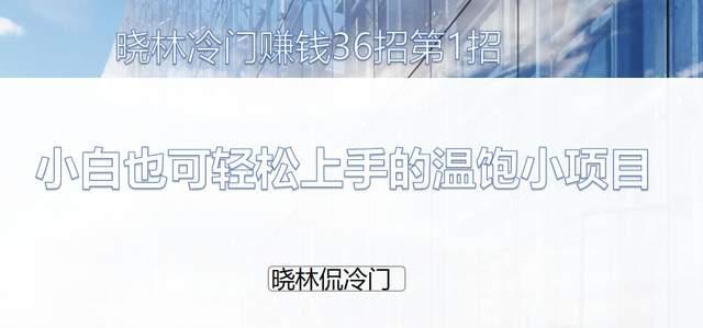 晓林冷门赚钱36招第1招:小白也可轻松上手的温饱小项目【视频课程】