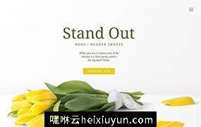 春季鲜花植物花卉网站标题头图banner广告图PSD设计素材模板Simple homes top scene