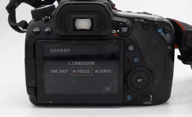 摄影入门:照片拍摄不清晰,你焦点找对了吗?