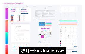 可视化业务数据管理后台设计模板 Black Dashboard Pro