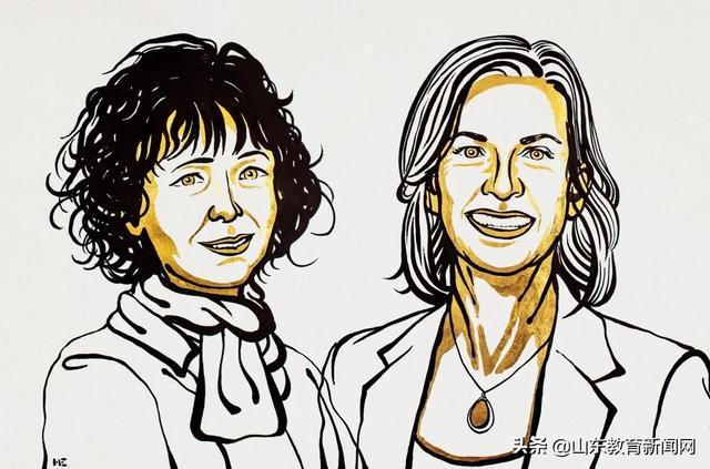 《【恒达平台网】众望所归!两位女科学家,获得2020年诺贝尔化学奖!》