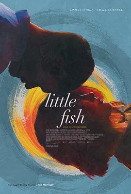 小鱼/鱼的记忆海报