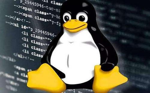 Linux系统查看及修改文件属性