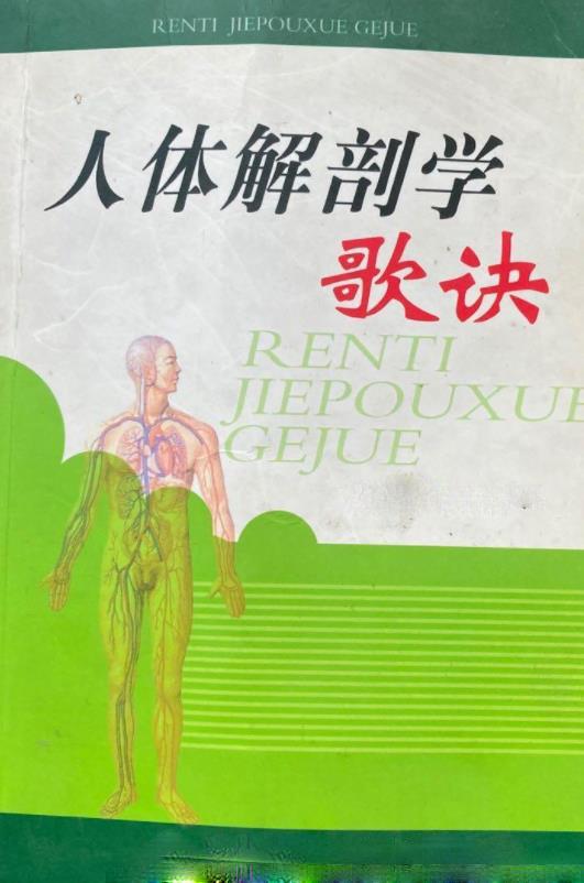 人体解剖学歌诀