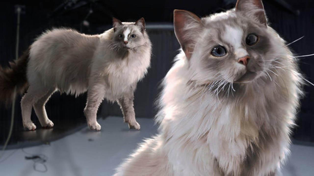 Houdini动物毛发特效教程 Creating Creature Hair & Fur Grooms in Houdini